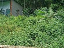 Bán đất Phú Thạnh, Nhơn Trạch, SHR 10tr/m2 224m2 100m thổ cư