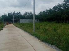 Bình Phước đất nền trung tâm thị trấn Chơn Thành giá chỉ từ 320tr.Lh:0935.611.956
