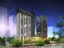 Dự án căn hộ cao ốc văn phòng trung tâm hàng xanh