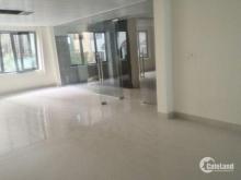 Cho thuê văn phòng phố Tôn Thất Tùng,  DTSD: 150m2