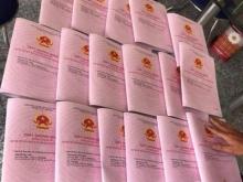 Cơ hội đầu tư sinh lời nhanh chóng cho các nhà đầu tư hiện nay tại Trảng Bàng Tây Ninh