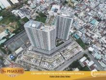 Chuyển nhượng căn hộ The Pegasuite quận 8 nhận nhà ngay tháng 12.