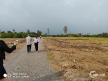 Chính chủ bán đất tiện xây biệt thự vườn Bến Lức - Long An