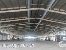 Cho thuê nhà xưởng tại Thanh Hóa Hậu Lộc DT 6002m2 giá rẻ