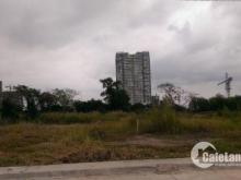 Cần tiền bán gấp miếng đất 117m2 SHR,đường Dương Thị Mười,Q12.LH 0767859501