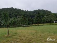 Mua bán đất nền Hòa Lạc, bán đất Phú Cát  từ 120m2 Mt 6m  900 triệu  0977514027