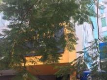 Bán nhà MT đường Hồ Bá Kiện, DT: 4x10m, trệt, 3 lầu, thuê 55 tr/th, giá 13.5 tỷ TL