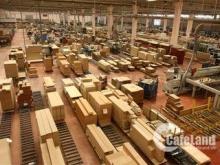 vỡ nợ tôi bán gấp xưởng, Q8 780m2, giá 2.46 tỷ. LH: 0363416763
