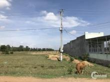 Cần tiền bán gấp 250m2 đất thổ cư, mặt tiền đường nhựa xã Bình An, Bắc Bình, Bình Thuận