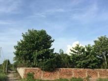 Bán Trang Trại Vườn Trái Cây 2 Mặt Tiền Rạch Cầu Cây Xanh Đường Bình Mỹ