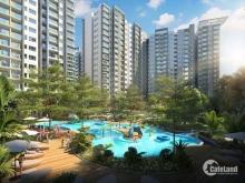 Sang nhượng căn hộ khu Emerald thuộc dự án Celadon City