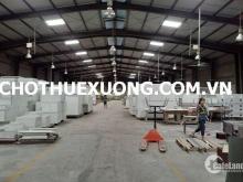 Cho thuê kho xưởng đẹp tại Khu công nghiệp Tân Hồng, Từ Sơn, Bắc Ninh giá tốt