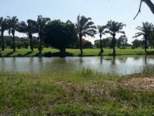 Ra gấp 2 lô biệt thự  Golf Long Thành,12 triệu/m2, Sổ đỏ riêng,MT 20m