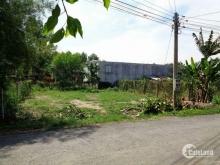 Bán gấp 515m2 đất mặt tiền Đoàn Nguyễn Tuân giá chỉ 6tr5/m2
