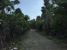 Đất Khu Dân Cư 2 Mặt Tiền Kinh Doanh đường Lê Thị Lơ, Tân Hiệp, HócMôn
