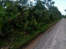 Đất Huyện Bàu Bàng 1178m², gần UBND xã Long Nguyên. LH: 0963780016