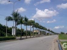 Đất trống lô góc ở khu CHDV, DTCN 8x22m, DTCN 137m2, giá 15 tỷ, Phường Thảo Điền