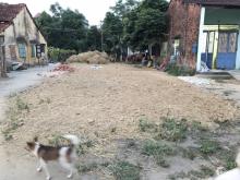 Bán lô đất 2 MT đường Phan Xích Long - Tân Hòa 6, giá bán: 6,8 tỷ