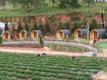 Sở hữu 5050m2 đất trang trại tại khu nghỉ dưỡng Lâm Đồng chỉ 370 triệu.