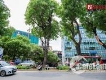 Siêu Phẩm lô góc 2 MT phố Kim Mã,6m&13m.Phù hợp làm nhà hàng,cafe,showroom,..
