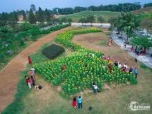 The phoenix garden tầm nhìn triệu đô cho nhà đầu tư tài ba