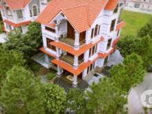 Tưng bừng khởi công, mua đất biệt thự siêu ưu đãi chỉ 3.5 tỷ