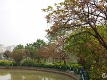 Bán căn biệt  thự nhà vườn cực đẹp tại huyện gia lâm LH 0983.213.453