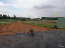 Dự Án Long Thành Airport City Đất Thổ Cư 100% Đầy Đủ Pháp Lý
