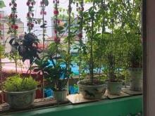 Nhà đẹp Nguyễn Lương Bằng, kinh doanh tốt, 40m, ở ngay, 4.5 tỷ