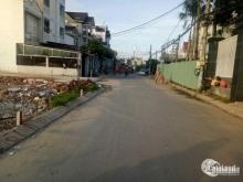 Chỉ còn duy nhất 1 miếng đất phường Tân Hạnh cần bán giá rẻ chỉ 530t