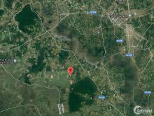 Chính chủ cần bán đất mặt tiền đường nhựa 10m tại  Gò Nổi, Ninh Điền, Châu Thành