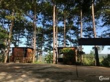 Bán đất 100m² mặt tiền quốc lộ 27, khuôn viên rộng 20.000m²,vị trí đẹp huyện Đức