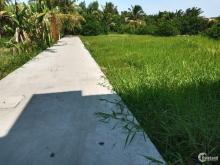 Cần bán lô đất thổ 200m2 Xã Tân Nhựt, Bình Chánh.SHR, Xây dựng tự do