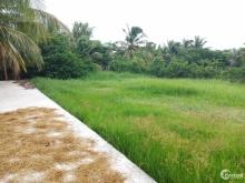 Cần bán gấp đất thổ cư chính chủ, SHR từng nền, KV xã Tân Nhựt huyện Bình Chánh