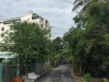 Không còn lô thứ 2 Đất thổ cư mặt tiền đường nhựa ngay sông Sài Gòn xã Bình Mỹ