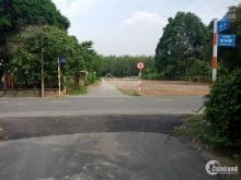 Bán miếng đất đường Bùi Thị Điệt, sát UBND xã Phạm Văn Cội, shr,250m2 giá 1.6 tỷ