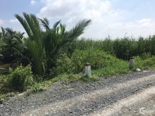 Đất thổ cư Nguyễn Văn Tạo, 100m2 ngay trường quốc tế mỹ AIS 1.9tỷ