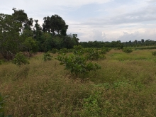 Cần bán 2 thửa đất tại tỉnh Đồng Nai, tiềm năng sinh lời cao, giá tốt.
