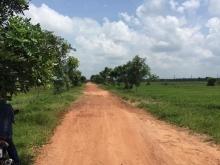 Trực tiếp chủ bán đất vườn 2 mặt tiền đường xã Trung An Củ Chi