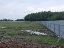 Cầ tìm chủ đầu tư đất vườn, xã phước khánh Nhơn Trạch, Đồng Nai