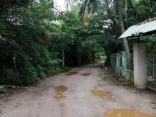 Cần bán 5000m2 đất sát khu vườn cò Nguyễn Xiển, Q.9, mặt tiền sông Trao Trảo