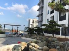 The Zen - Bàn giao căn hộ và mở bán tại tầng 5 với nhiều phần quà giá trị