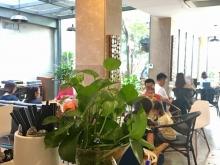do chủ nhà đi nước ngoài nên cần bán gấp nhà 4 tầng+quán cafe đang kinh doanh.