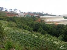 Bán 2 lô đất liền kề 2 mặt tiền dt 1800m2 đường Măng Lin,P.7,TP.Đà Lạt