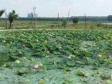 Đất Nhơn Trạch Đồng Nai, ngay mặt tiền đường 25C chỉ 750tr 100m2, thổ cư 100%