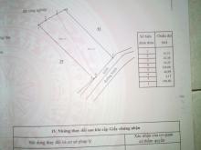 Bán 7000m2 đất CLN giá siêu mềm