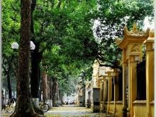 Cho thuê gấp nhà phố Chùa Láng, 70m2, MT 6m làm đồ uống, hàng ăn