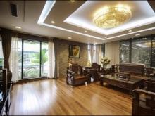 Bán nhà mới 5 tầng siêu đẹp cầu thang máy trung tâm Láng Hạ, Đống Đa