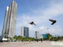 WyndHam Soleil Đà Nẵng, Cơn sốt đầu tư đang được lan truyền khắp cả nước