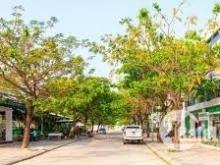 Đất nền Golden Hills City, Đà Nẵng Đã Có sổ giá đầu tư sụp hầm